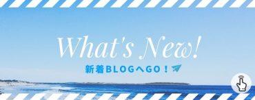 新着情報 What's New Blog ameblo アメブロ 夏 summer